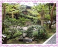 花街道 庭
