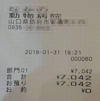 18-01-31-03.jpg