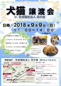2018年度 犬猫譲渡会 チラシ9月9日