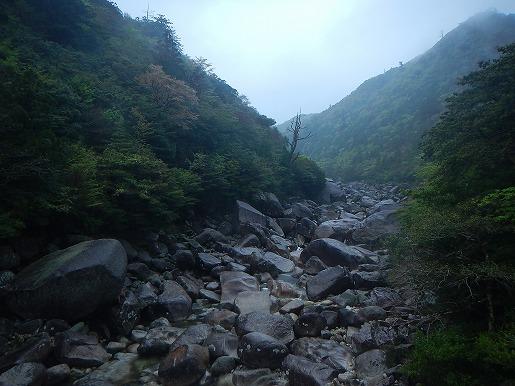4月14日(午前) 増水前の小杉谷橋からの荒川