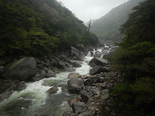 4月14日(午後) 増水後の小杉谷橋からの荒川