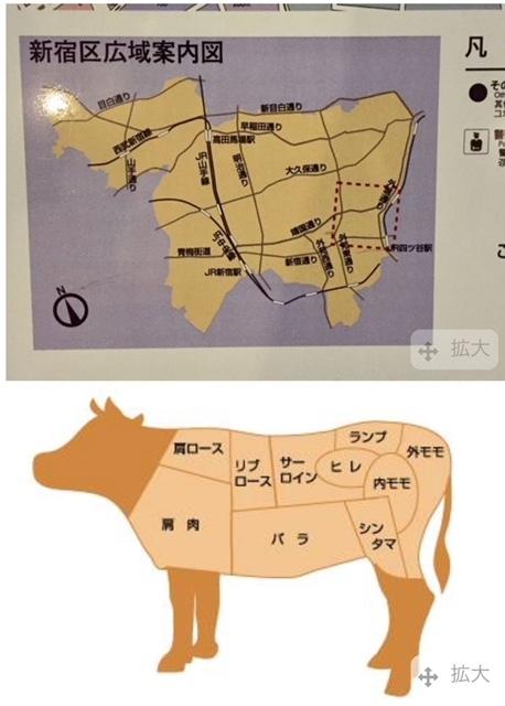 #新宿区広域案内図と牛の部位解説図