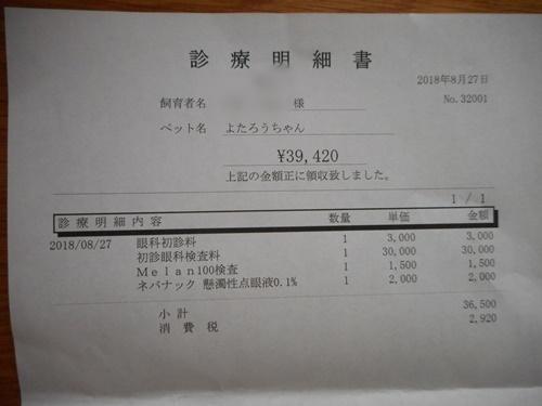 DSCN3413.jpg