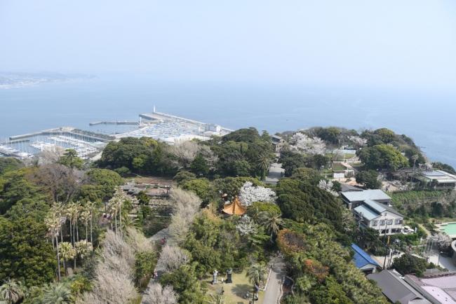 13628-江ノ島ー3