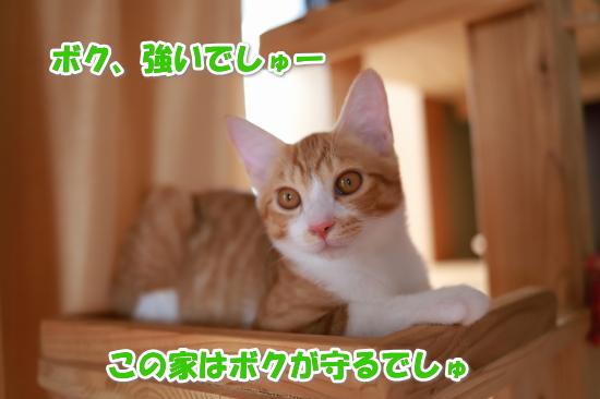 2_2018081619182671e.jpg