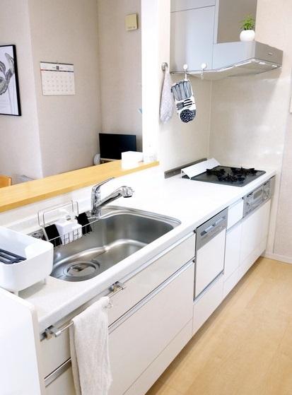 セリア・排水口カバー フラットタイプ・キッチン全体①