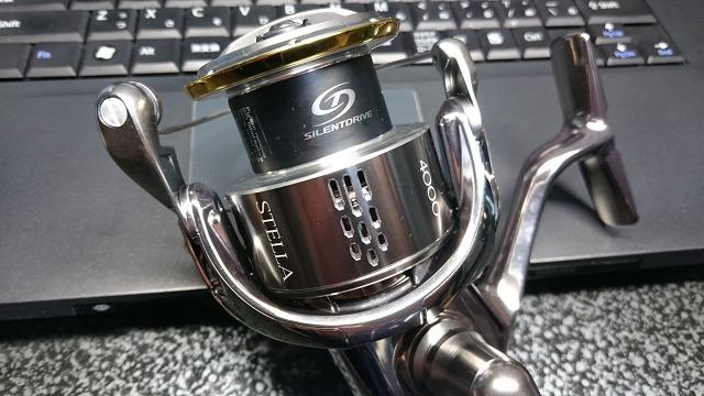 DSC_3991RSZ.jpg