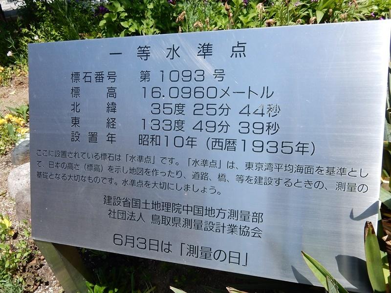 DSCN0593.jpg