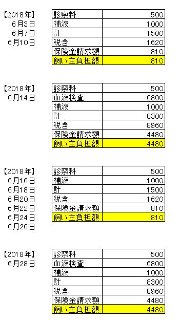 6月医療費