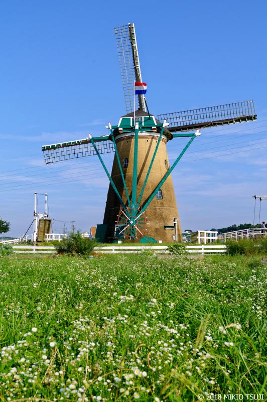 絶景探しの旅 - 0649 本物の本格風車とオランダのような風景 (佐倉ふるさと広場/千葉県 佐倉市)