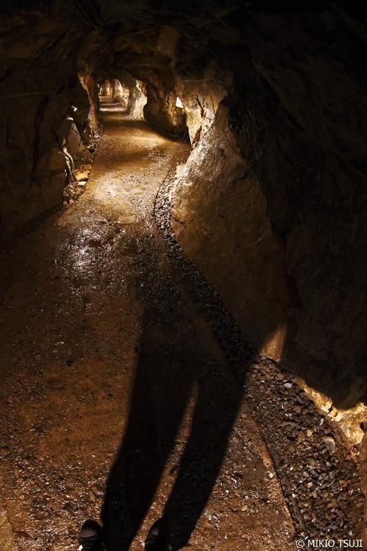 絶景探しの旅 - 0671 洞窟への誘い (日原鍾乳洞/東京都 奥多摩町)