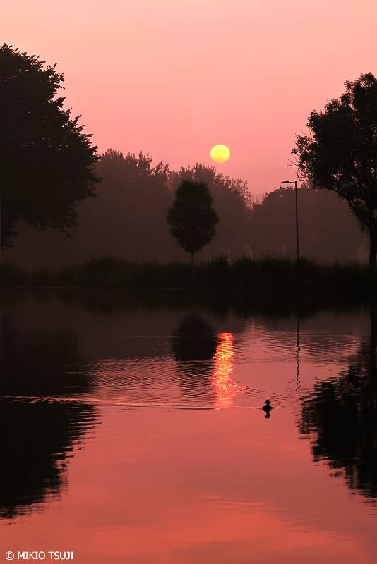 絶景探しの旅 - 0717 アムステル川に昇るオランダの朝日 (アムステルダム)