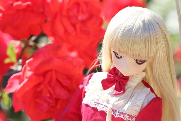IMG_0397.jpg